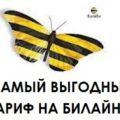 Какой тариф Билайн самый выгодный по Москве и Московской области